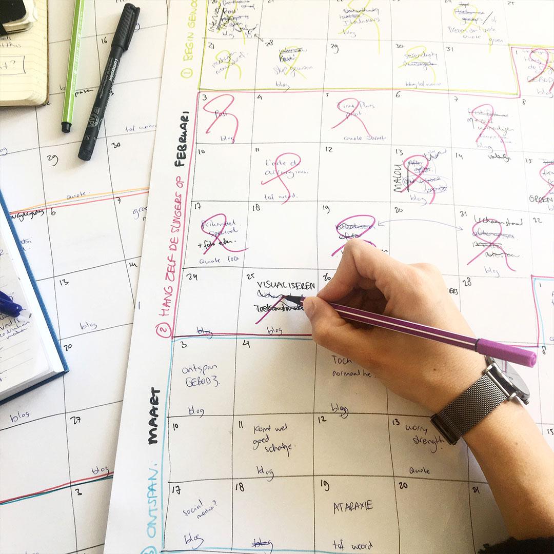Visualiseren - schema | Bijzonderdag